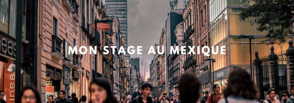 Stage au Mexique