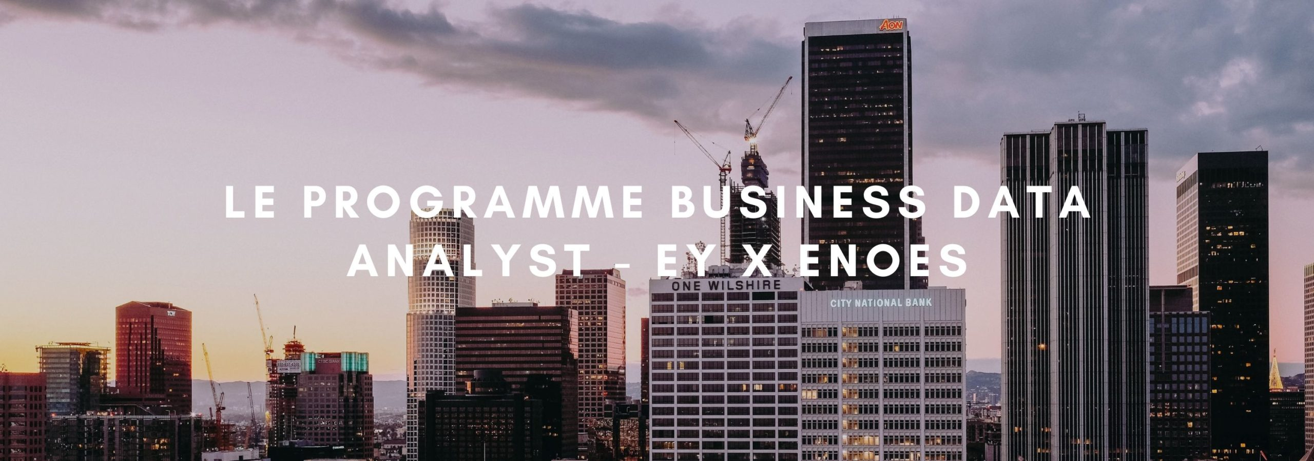 Le Programme Business Data Analyst - EY x ENOES