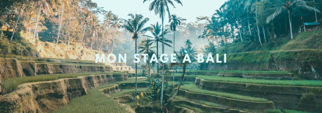 Mon stage à Bali
