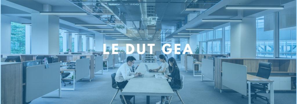 Le DUT GEA: débouchés, matières et conseils