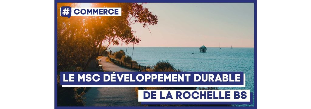 Le MSC De La Rochelle Business School
