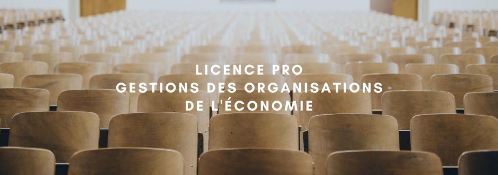 Licence pro gestion des organisations de l'Economie Sociale et Solidaire