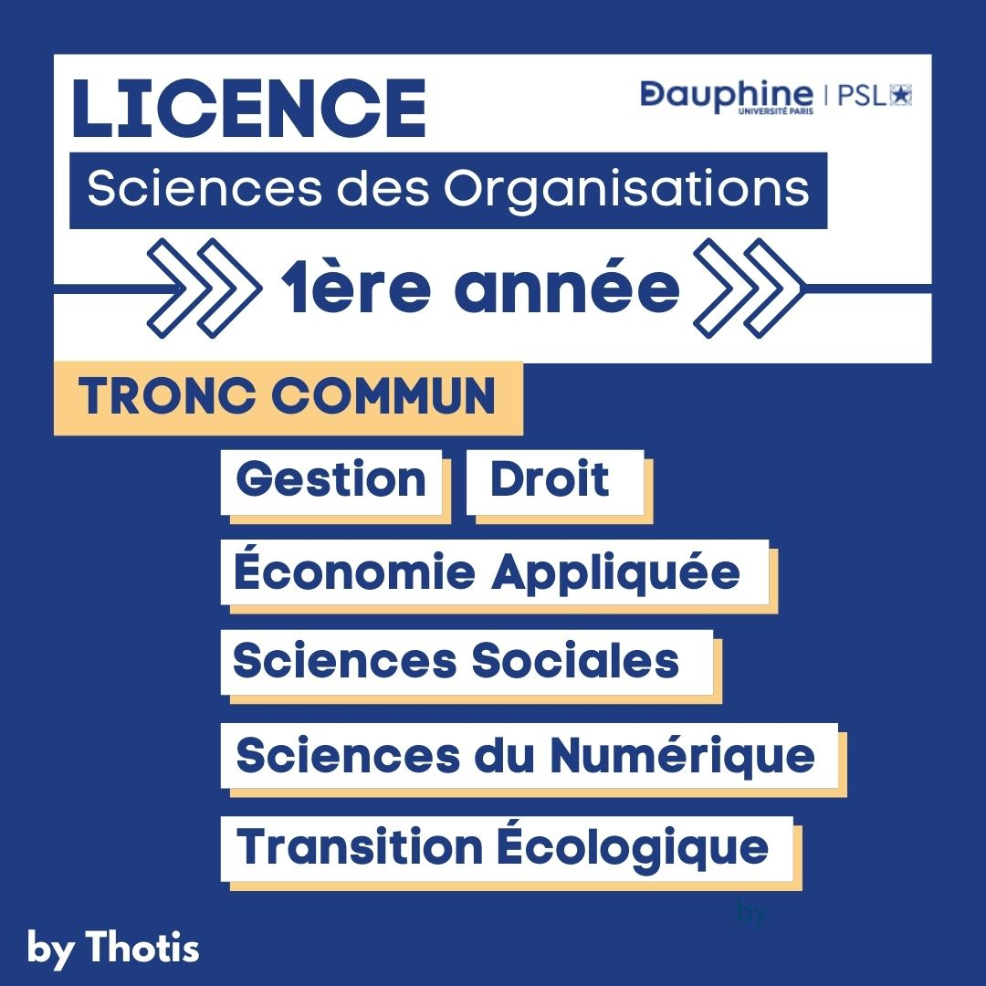 Licence Sciences des Organisations