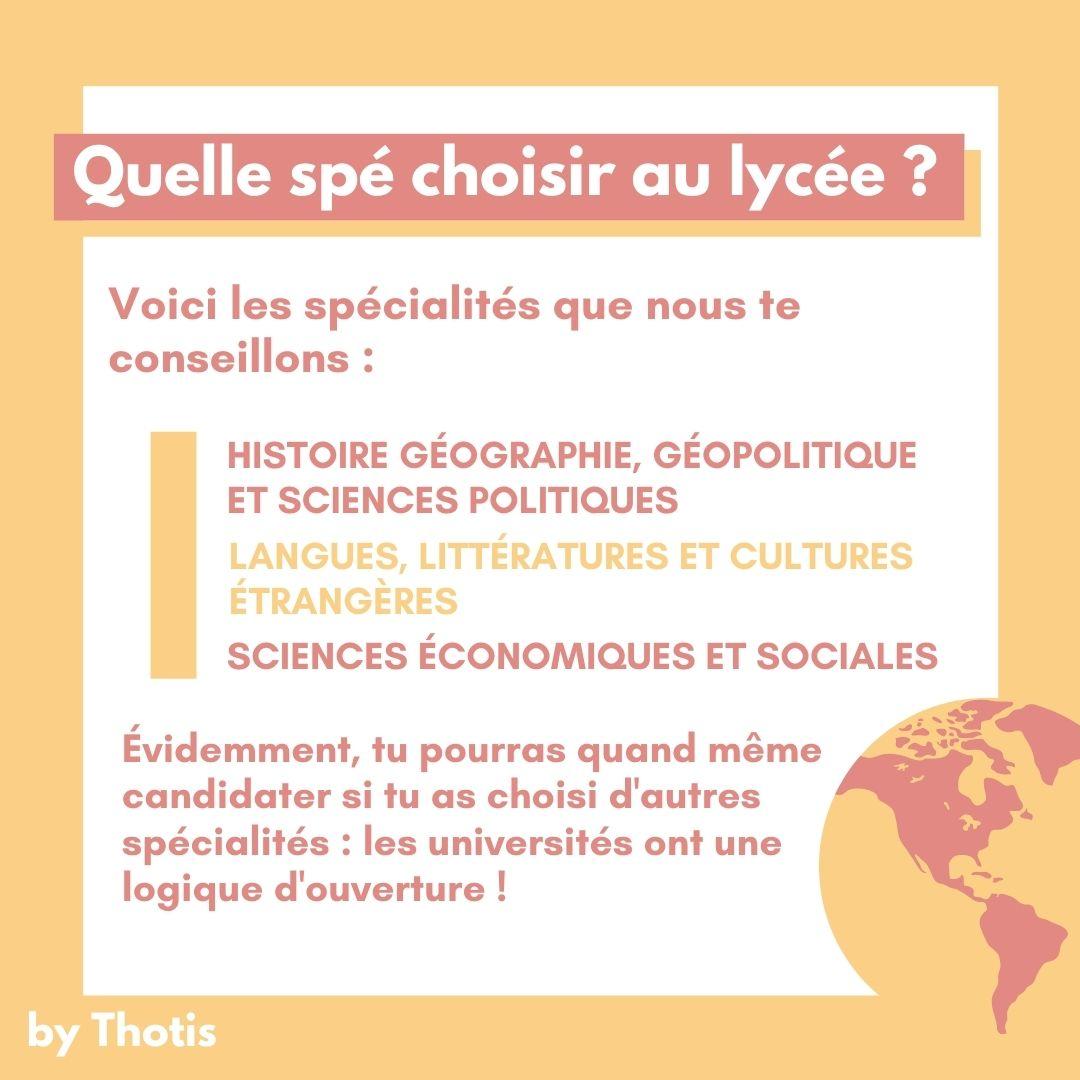 La Licence Science Politique : quelles spécialités choisir au lycée ?
