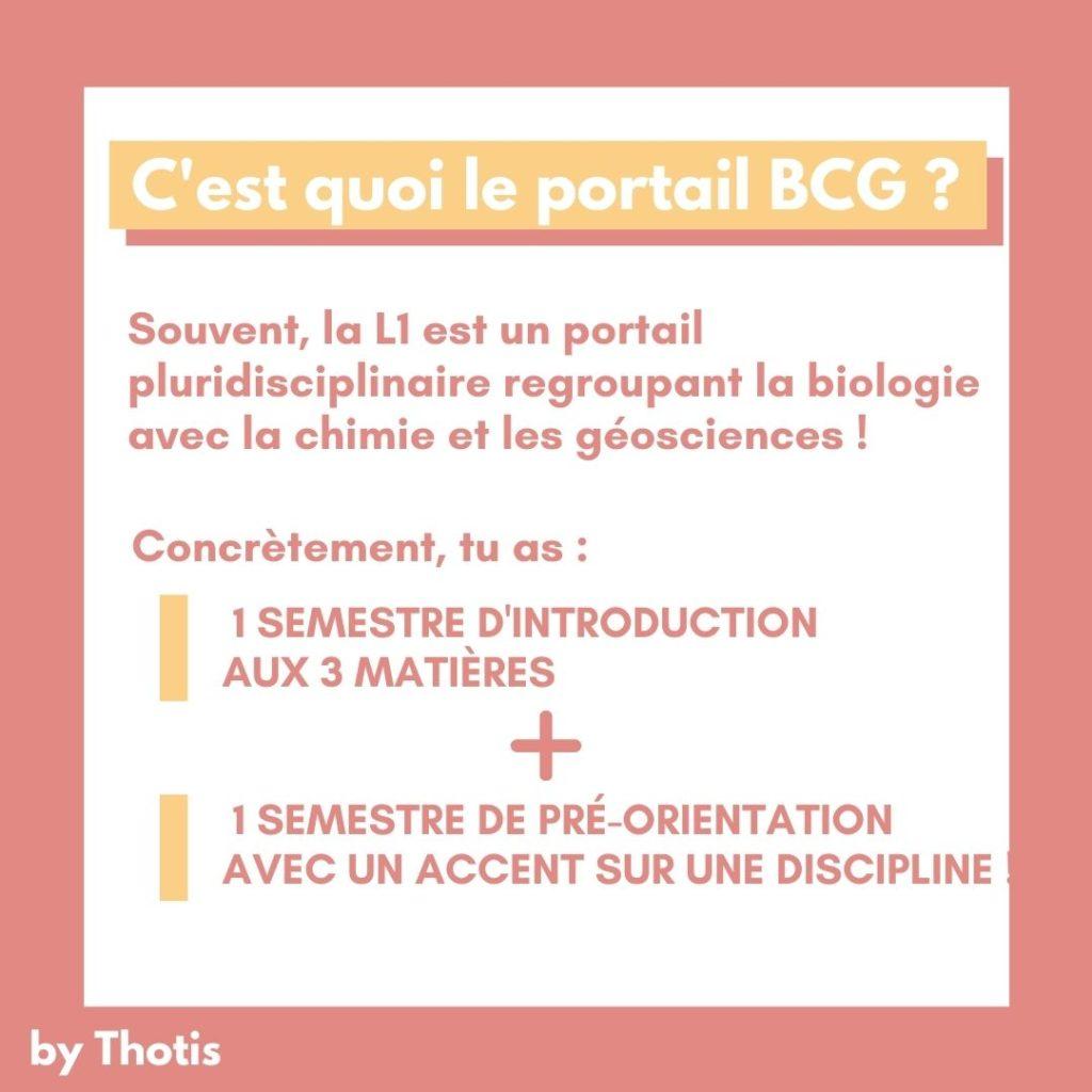 C'est quoi le portail BCG ?