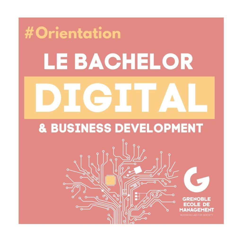 Bachelor Digital Grenoble Ecole de Management