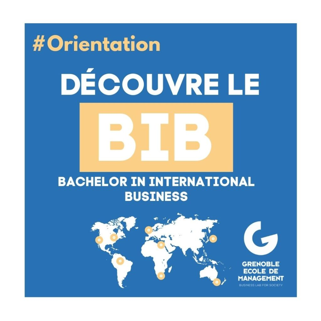 Bachelor in International Business