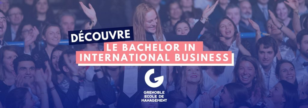 Bib de Grenoble Ecole de Management