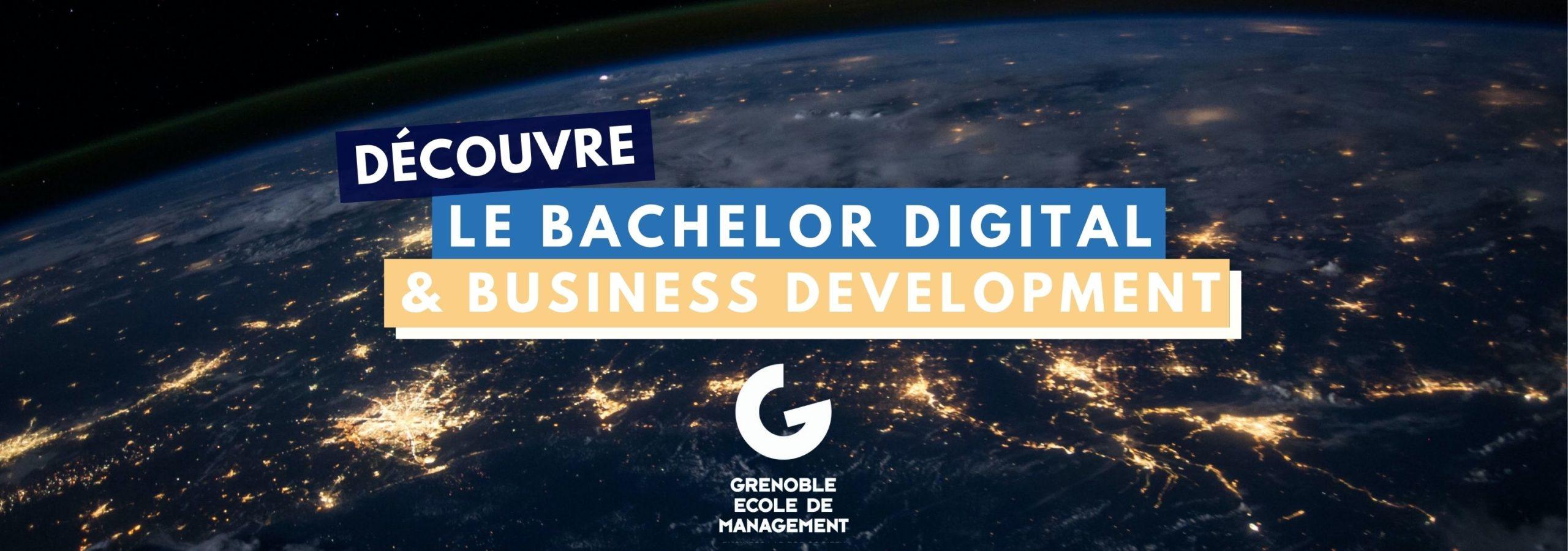 Bachelor Digital & Business Development