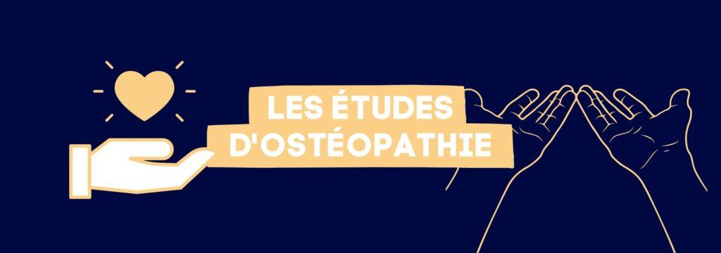 Les études d'Ostéopathie