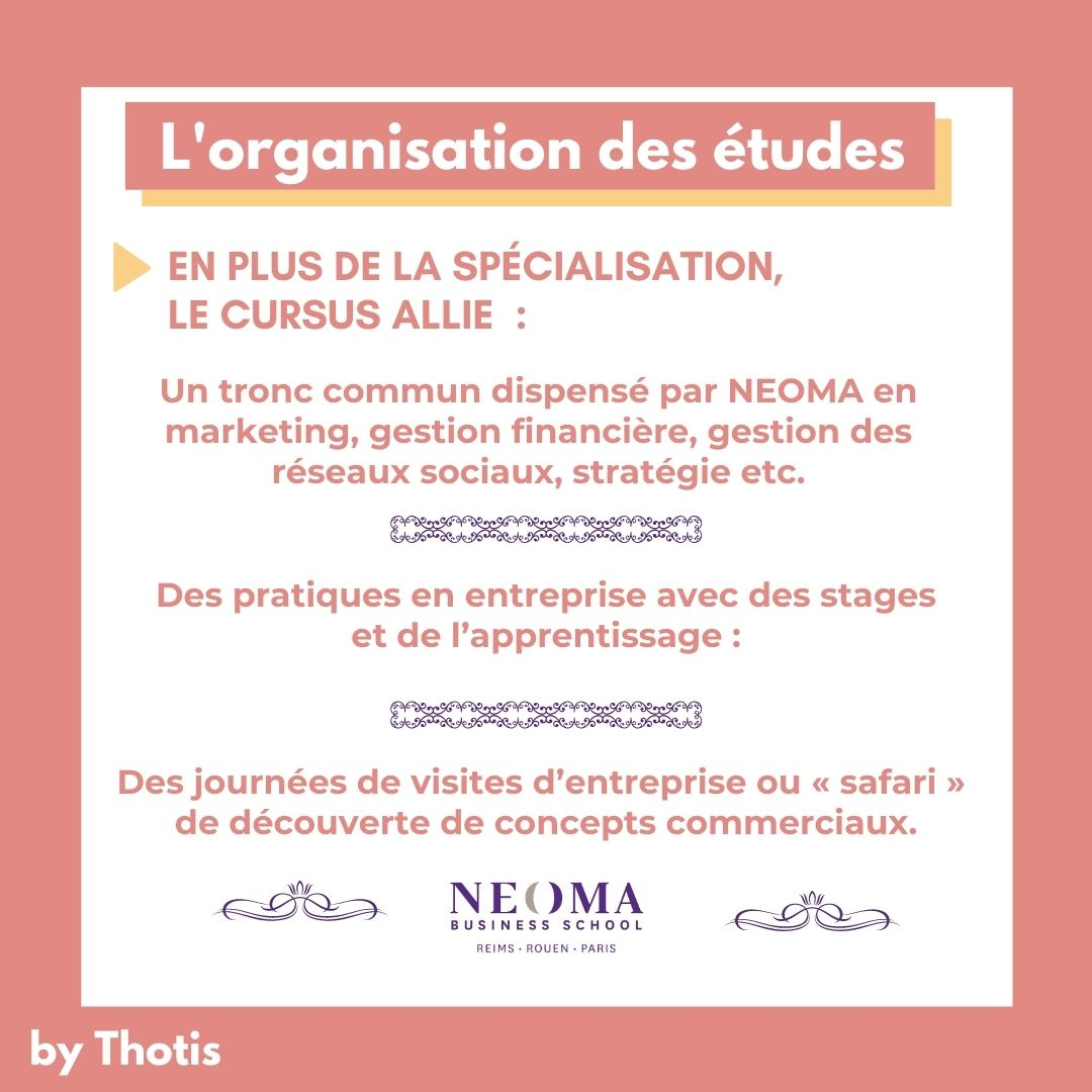 Organisation BMS de NEOMA