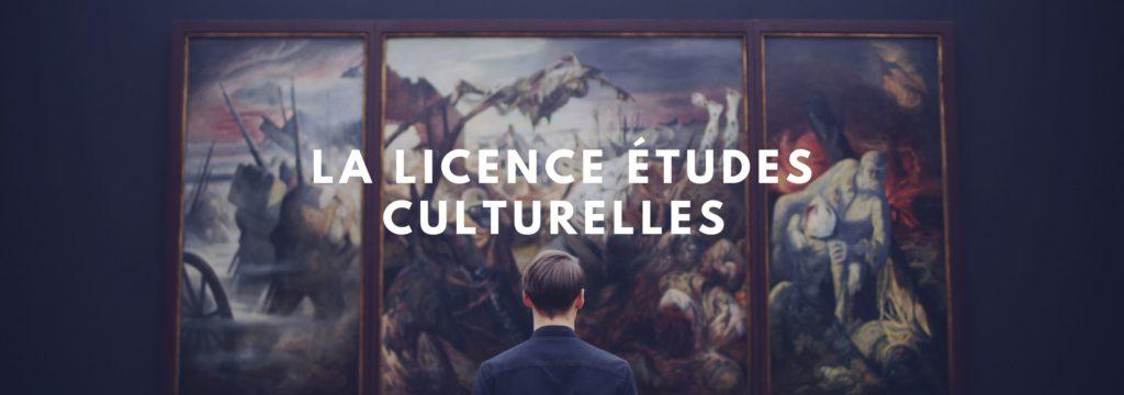licence études culturelles
