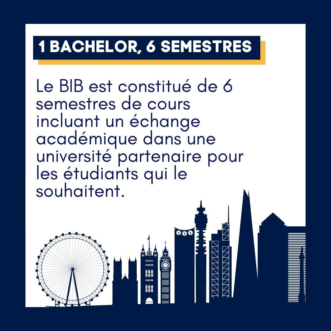BIB bachelor international business